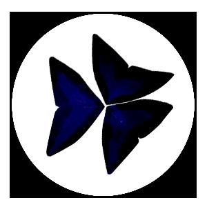 oxi_rund2